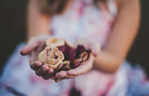 Vonjanje vrtnic pozitivno vpliva na ravnovesje ženskih hormonov