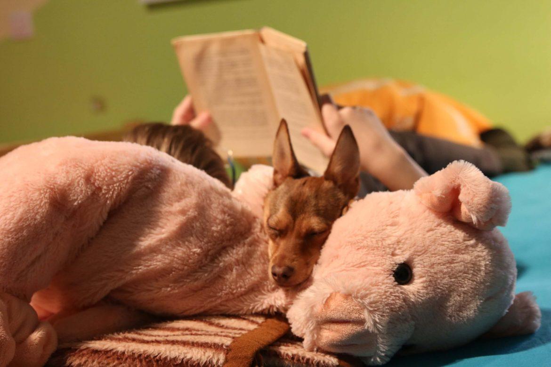 Skupno spanje